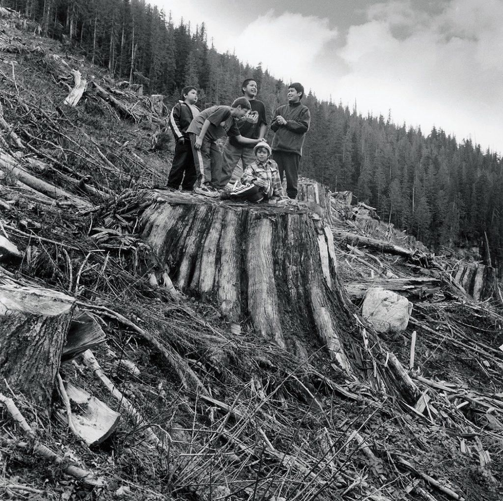 Lincoln Clarkes Photographs: Sims Creek, Elaho Valley, British Columbia 2001