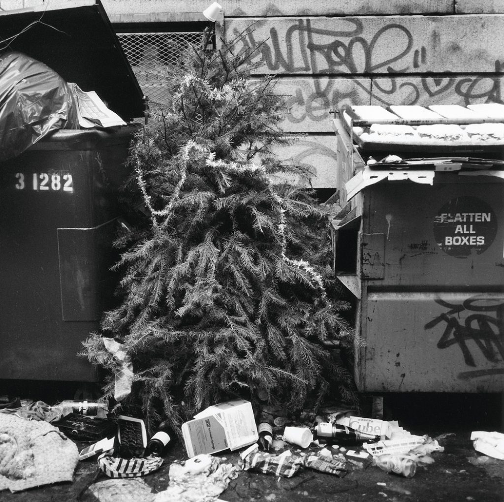 Lincoln Clarkes Photographs: Post Christmas trash, Vancouver 1999