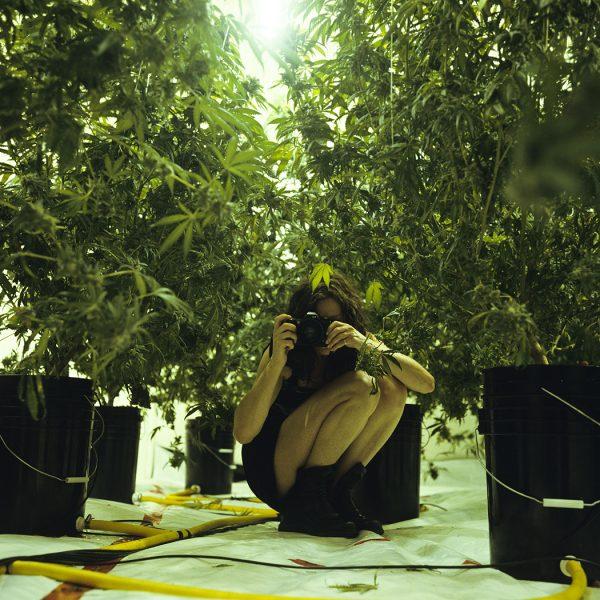 Lincoln Clarkes Photographs: Champion marijuana farmer, Vancouver 2006